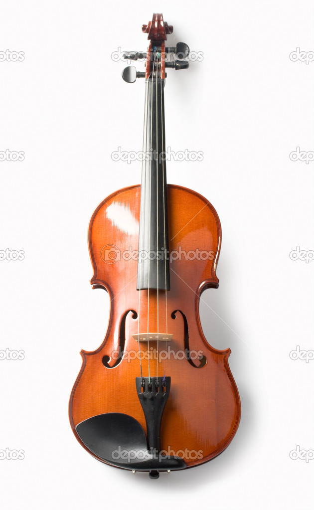 Violin isolate — Photo #2617725