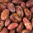 Beans background — Stock Photo