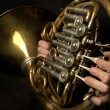 Old French Horn closeup — Stock Photo #1058961