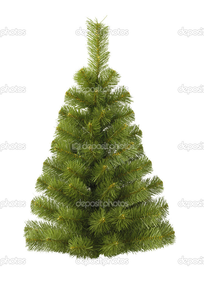 Christmas fur-tree on white — Stock Photo #1058907