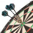 Dart Board — Stock Photo