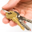 Royalty-Free Stock Photo: Hand holding keys
