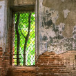 Stock Photo: Abandoned Old House