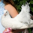 White pigeon in hand of bride — Stock Photo #1074500