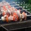 shish kebab — Stock Photo #1076425