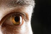 Human eye close-up — Stock Photo