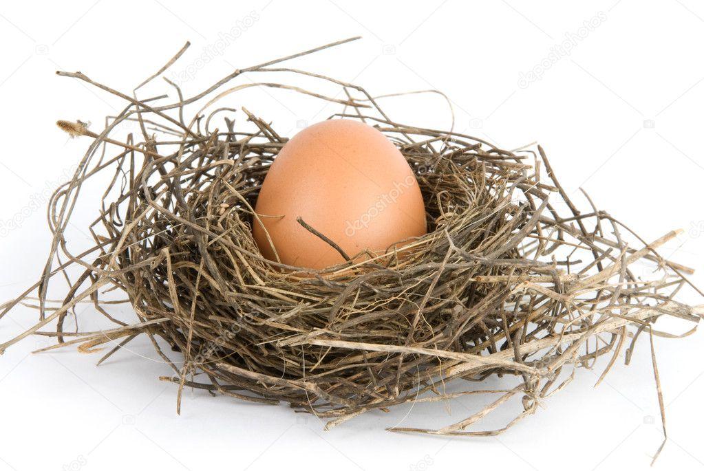 Сидя куриные яйца в гнезде
