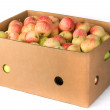 Fresh apples in carton container — Stock Photo