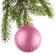 Christmas decoration on a fir-tree — Foto de stock #1554183