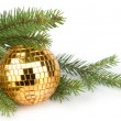 Christmas ball and branch — Stock Photo