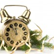 Stock Photo: Alarm clock and fir-tree branch