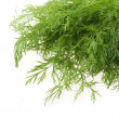 Bunch of ripe green dill — Stock Photo #1628764