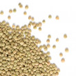 Pile of Lentils isolated on white - Stock Photo