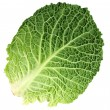 Leaf of Ripe Savoy Cabbage — Stock Photo
