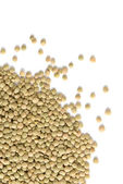 Pile of Lentils isolated on white — Stock Photo