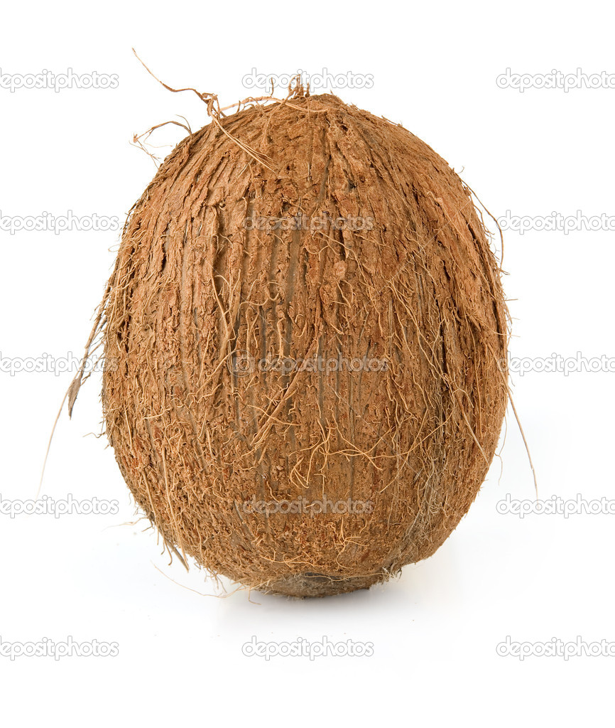 Coconut isolated on a white background — Stock Photo #1628975