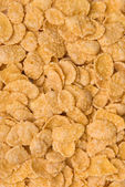 Close-up of cornflakes — Stock Photo