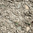 Royalty-Free Stock Photo: Cement texture 1