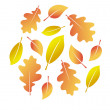 Vector autumn leaves — Stock Vector #1208195