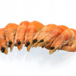 Shrimps - Foto de Stock