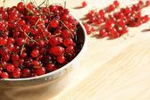 Red currants in a bowl — Stock Photo