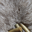 Cartridges on fur — Stock Photo