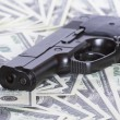 Gun and money — Stock Photo #1094421