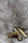 Cartridges on fur — Zdjęcie stockowe