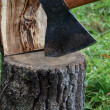 Axe In The Log - Stock Photo