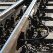 Railroad track — Photo