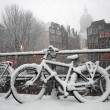 Amsterdam Winter Scene — Stock Photo #1567092