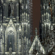 Cologne Cathedral In The Night — Stockfoto