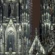 Catedral de Colonia en la noche — Foto de Stock