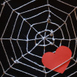 Stock Photo: Love Web