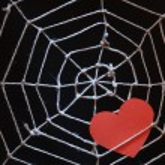 miłość w sieci web — Zdjęcie stockowe