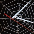 Web For Time — Stockfoto