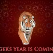 Year of Tiger — Stock Vector
