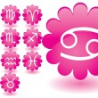 Pink flowers as zodiac icons - Stock Vector