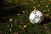 Handball — Stock Photo