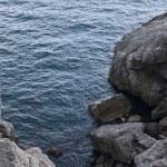 Sea rocky bay — Stock Photo #2379330