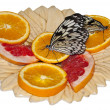 Two butterflies on oranges. — Stock Photo