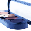 Eye shadows with brush — Stock Photo #1111063