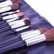 Make-up brushes in case — Stock Photo