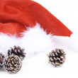 Santa Claus hat and pine cones - Stock Photo