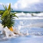 ananas sur le littoral dans les vagues — Photo