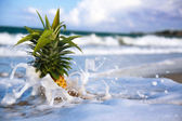 Pineapple on coastline in waves — Stock Photo