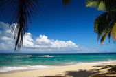 Lounge beach with leaf of palm — Stock Photo