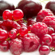 Raspberries, currants and cherries — Stock Photo #1040607