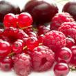 Raspberries, currants and cherries — Stock Photo