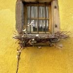 Country window — Stock Photo